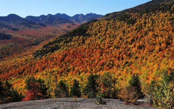 (Tom Curley | AP Photo) Fall foliage changes colors near Three Brothers Mountain in New York's Adirondack Park in Keene Valley, N.Y., Tuesday, Oct. 11, 2016.
