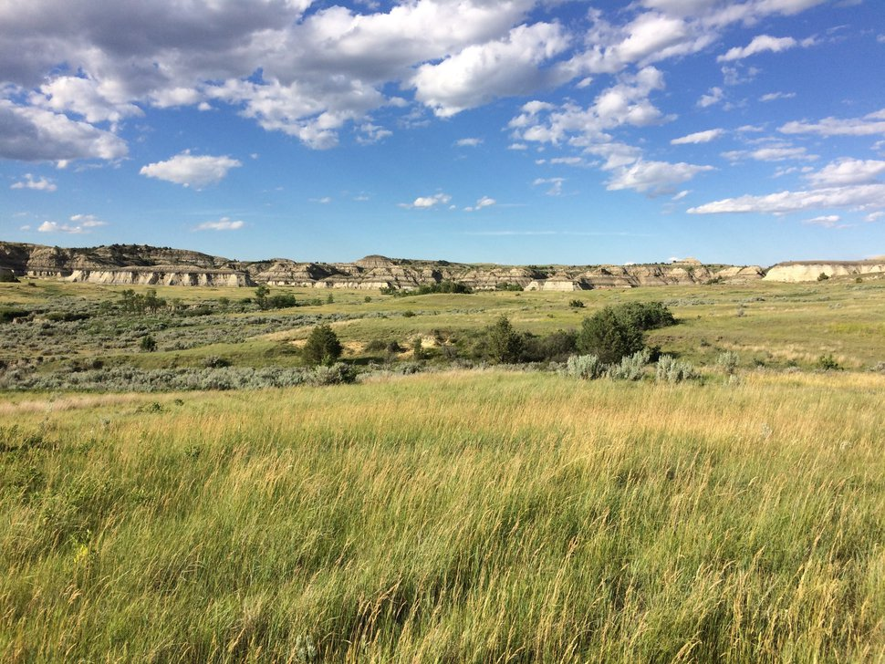 FILE - This June 19, 2017, file photo shows a scenic landscape near the Theodore Roosevelt National Park in western North Dakota. Roosevelt hunted and ranched in the area in the 1880s. His old turf in North Dakota is now the national park in his name. The park is home to a wide variety of wildlife, from prairie dogs to wild horses and bison. It is North Dakota's top tourist attraction, drawing more than 700,000 visitors annually. Now a group of Roosevelt enthusiasts hope to establish a presidential library in the majestic surroundings he so loved. (AP Photo/Carey J. Williams, File)