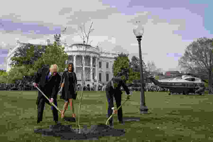 Political Cornflakes: France's president brought Trump a tree to plant at the White House. A few days later, it was put in quarantine.