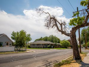 """(Sara Diggins 