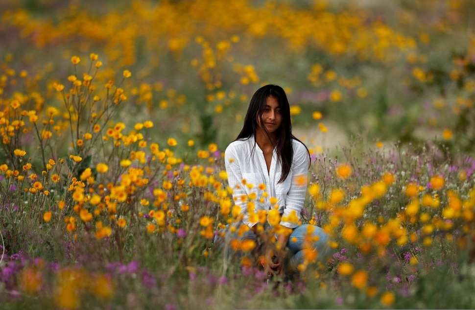 In this Wednesday, March 6, 2019, photo, a woman sits in a field of wildflowers in bloom near Borrego Springs, Calif. Two years after steady rains sparked seeds dormant for decades under the desert floor to burst open and produce a spectacular display dubbed the super bloom, another winter soaking this year is shaping up to be possibly even better. (AP Photo/Gregory Bull)