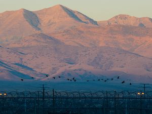 (Francisco Kjolseth  |  Tribune file photo)  A flock of geese fly over the Utah State Prison as the Oquirrh Mountains are lit up by the rising sun on Wed. Sept. 19, 2018.
