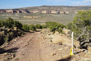 (Zak Podmore | The Salt Lake Tribune) Survey stakes along a hillside 14 miles north of Monticello indicate a renewed interest in uranium mining in San Juan County. June 14, 2021.