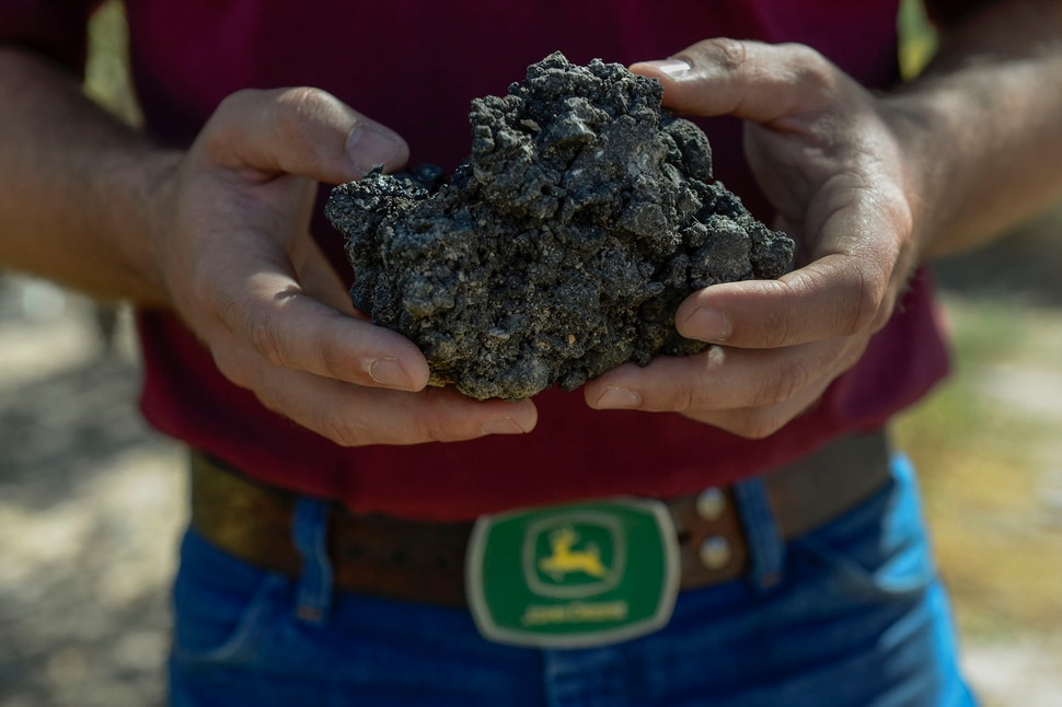 (Leah Hogsten | The Salt Lake Tribune) Tart cherry grower Ryan Rowley holds a chunk of asphalt that rolled off of a hopper truck leaving the nearby Staker Parson Keigley Quarry that landed in the cherry orchard, Sept. 29, 2020. The Keigley quarry provides construction road base aggregates and asphalt. Continual sand and gravel mining and processing at Utah County's West Mountain is harming fruit production in this bucolic area near Payson.
