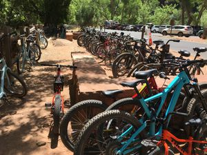 (Photo courtesy of Zion National Park) Up to 400 bikes are parked at the Temple of Sinawava, a popular trailhead in Zion National Park. Since the park's reopening May 13, bicycling has become a popular way to tour Zion Canyon in the absence of the park's shuttle service. Starting July 1, cars were barred from the canyon as the shuttle service resumed using modified buses to enable social distance. Reservations are required.