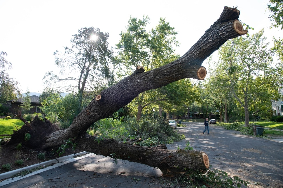 (Francisco Kjolseth | The Salt Lake Tribune) Neighbors come out to check on the extensive damage along Westmoreland Dr. in Salt Lake City on Wednesday, Sept. 9, 2020, following a storm that brought hurricane-force winds.