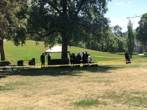 (Fox 13) A man is dead and a suspect in custody after a stabbing at Liberty Park Sunday afternoon.