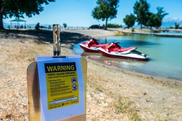 Chris Detrick | The Salt Lake Tribune A posted sign warning about a toxic algal bloom in Utah Lake Thursday, June 29, 2017.