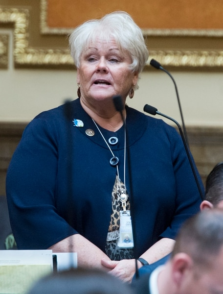 (Rick Egan | The Salt Lake Tribune) Rep. Susan Duckworth discusses HB 41, which has become known as Hannah's Bill on the floor of the House of Representatives, Friday, January 26, 2018.