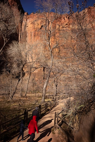 (Trent Nelson | The Salt Lake Tribune) Hikers on the Riverside Walk in Zion National Park as the government shutdown continues on Saturday Jan. 12, 2019.