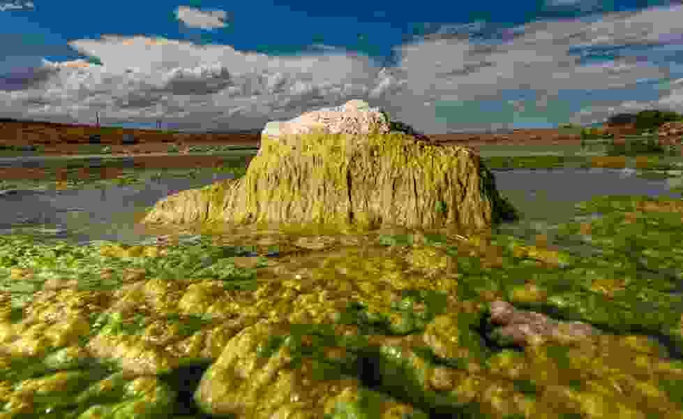 Budget uncertainty pauses algal bloom testing at Utah Lake