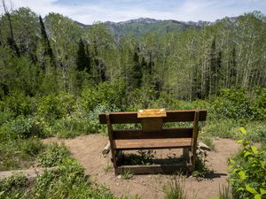 (Rick Egan | The Salt Lake Tribune) The Boyds' Bench on the Willow Heights hike in Big Cottonwood Canyon, seen on Wednesday, June 16, 2021, has views of Arnold Peak and Gobblers Knob and has a book to sign that's kept in the box on the back of the bench.