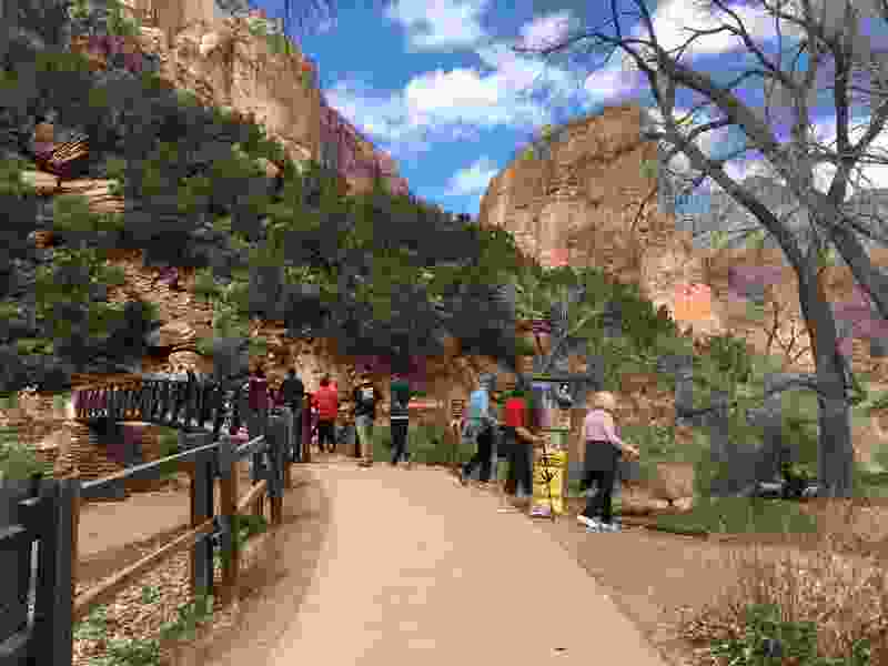 Pressure builds from locals to close Utah's Zion National Park even as tourists continue to go there