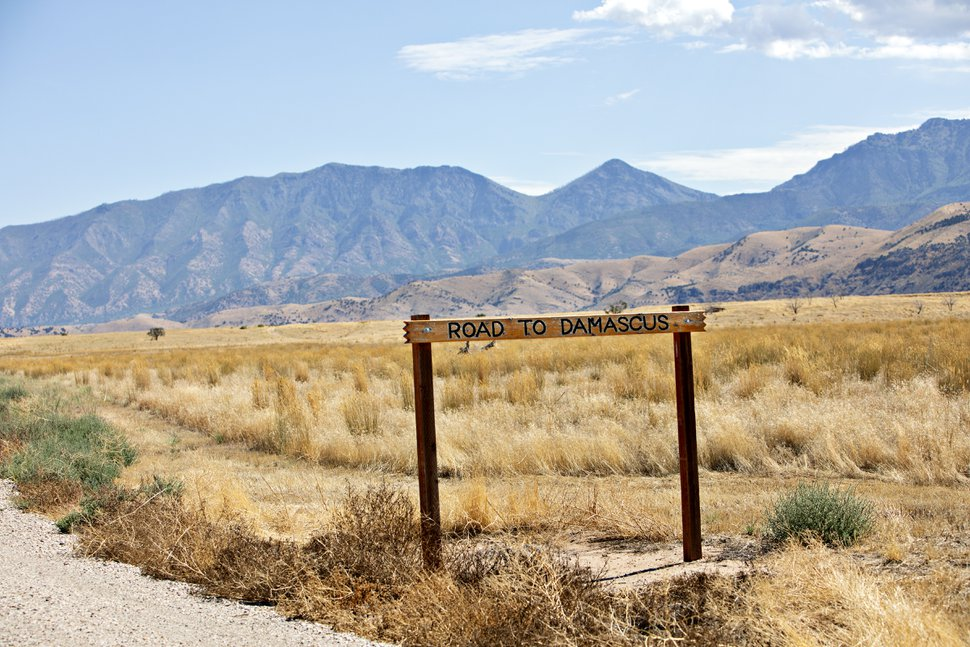 """(Kim Raff 