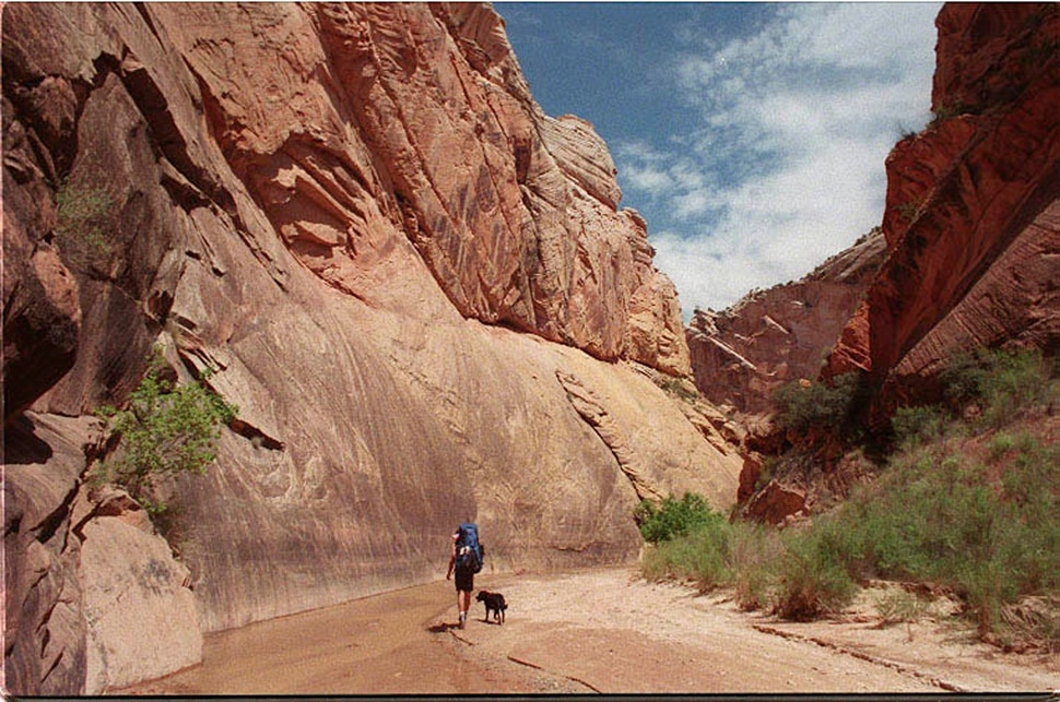(Stefani Day | Tribune file photo) Hackberry Canyon, in Grand Staircase-Escalante National Monument is photographed May, 1999.