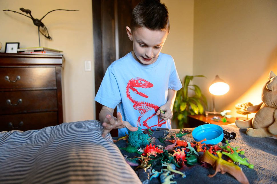 (Trent Nelson | The Salt Lake Tribune) 10-year-old dinosaur fanatic Kenyon Roberts sorts through dinosaurs in his room, Thursday December 14, 2017 in Draper. Roberts persuaded Sen. Curt Bramble to draft legislation to change Utah state fossil from Allosaurus to Utahraptor.