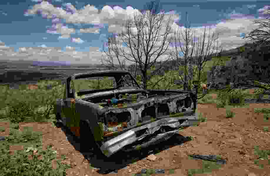 Signs of new life unfolding a year after Utah wildfire