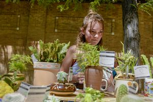 (Leah Hogsten     The Salt Lake Tribune)  Ava Brown, 13, from Holladay, sells cactuses and other succulent plants, repotted in vintage ceramic containers at the 2019 Craft Lake City DIY Festival. She was among the sellers on Kid Row, where children 14 and under make and sell their products. Craft Lake City's 2021 DIY Festival kicks off Friday, August 13 and runs through Sunday, August 15.