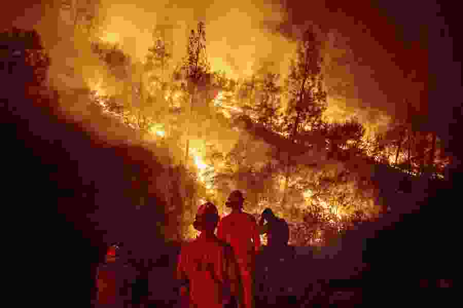 Analysis links years with biggest wildfires to those with hottest temperatures