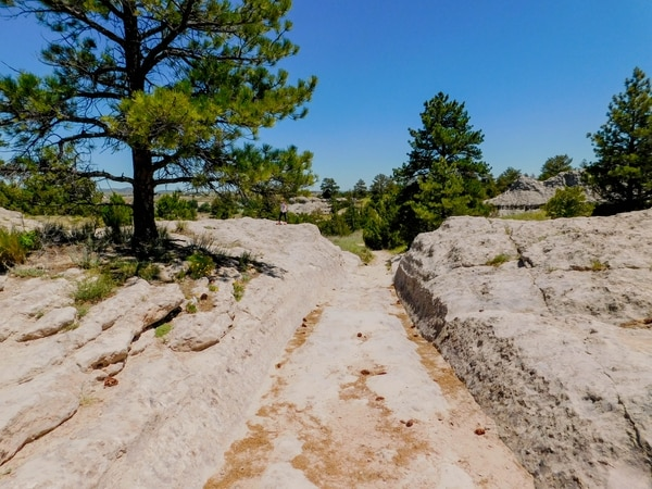 Erin Alberty | The Salt Lake Tribune Scenes from the Oregon Trail: Wagon ruts on Deep Rut Hill near Guernsey, Wyo.
