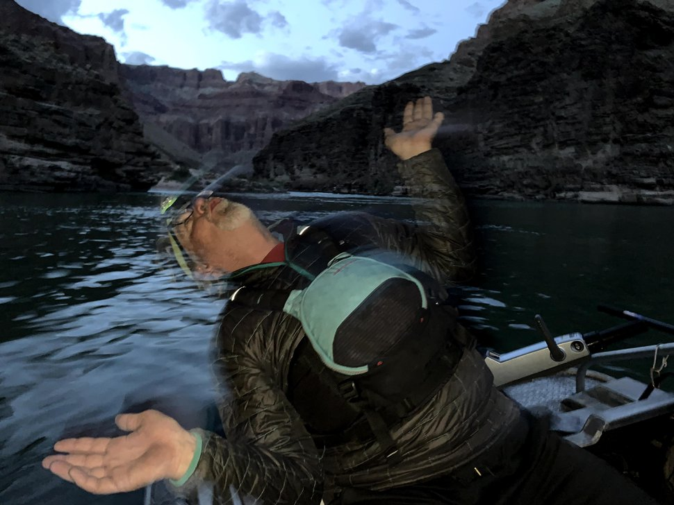 (Judy Fahys | InsideClimate News) Dennis Harris, part of the research team monitoring juvenile humpback chub last spring in Grand Canyon National Park, imitates how native fish respond to electrofishing, a nonlethal capture technique. The scientific teams stun fish with electricity so they can be counted, measured and tagged in an experience likened to