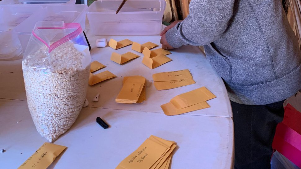(Courtesy of Cynthia Wilson) Workers pack seeds for the program in Monument Valley. Packets will be mailed out to families beginning this week.