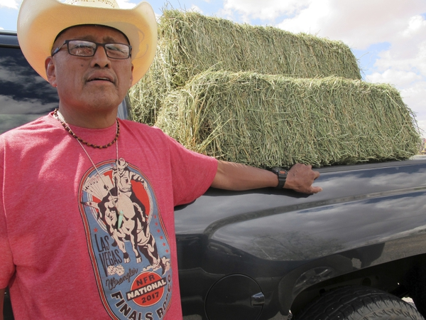 In this Thursday, May 3, 2018 photo, Charlie Smith Jr. stands outside his pickup truck near the site where dozens of horses were found dead near Cameron, Ariz. A couple of miles off the highway through northern Arizona is one of the most stark examples of the toll drought has taken on the region: more than 100 dead horses surrounding by cracked dirt, swirling dust and a ribbon of water that couldn't quench their thirst. Officials on the Navajo Nation are working to cover the site with lime to help the animals decompose and keep away scavengers. (AP Photo/Felicia Fonseca)