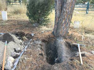 (Photo courtesy of National Park Service, Investigative Services Branch) This case file photo shows the damage in the Fort Yellowstone cemetery, a historic site in Yellowstone National Park. Rodrick Dow Craythorn, of Syracuse, Utah, was found digging for buried treasure last year.
