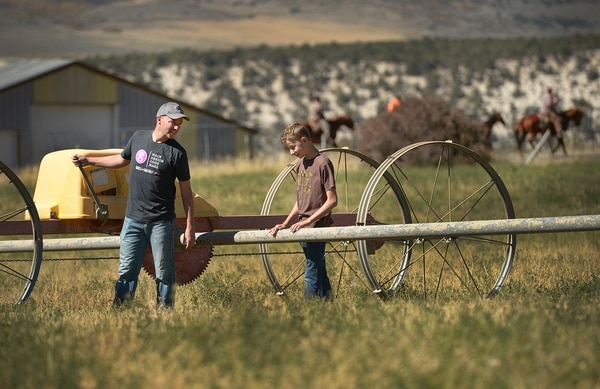 (Leah Hogsten   The Salt Lake Tribune) Spencer Cox and his son Adam, 14, move irrigation pipes in one of the fields on their 14 acre property in preparation of winter.