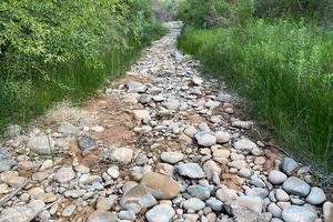 (Liz Thomas) The right fork of Mill Creek near Moab after its flow was reduced to less than one cubic foot of water per second on June 12. Water from the creek was used to fight the Pack Creek Fire, but officials say more water was diverted than intended.