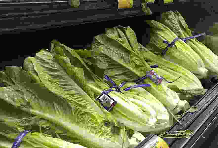 Don't eat romaine lettuce grown in Salinas, California, officials say