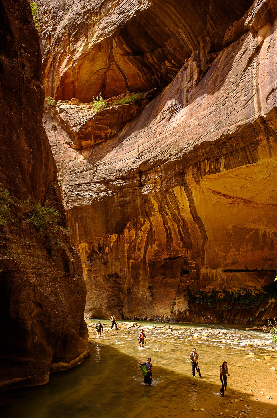 (Trent Nelson | The Salt Lake Tribune) Hikers in the Narrows, Zion National Park, Wednesday May 6, 2015.