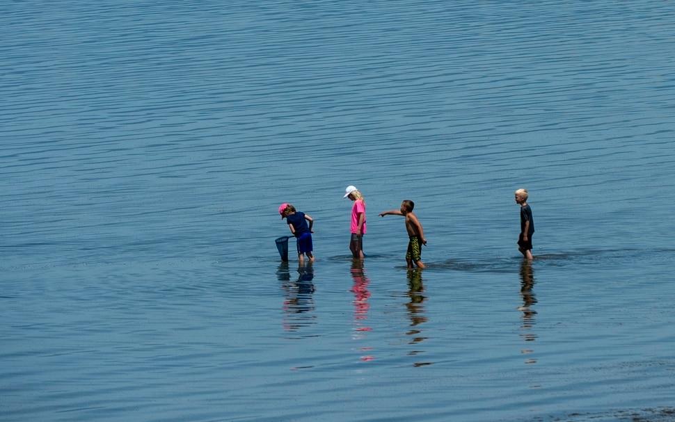 (Rick Egan | The Salt Lake Tribune) A group of kids explore the shore of the Great Salt Lake, Tuesday, June 11, 2019.