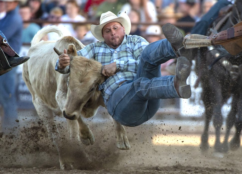 (Rick Egan | The Salt Lake Tribune) Blake Brown from Spanish Fork competes in the Steer Wrestling Competition at the Western Stampede Rodeo on Saturday, July 6, 2019.