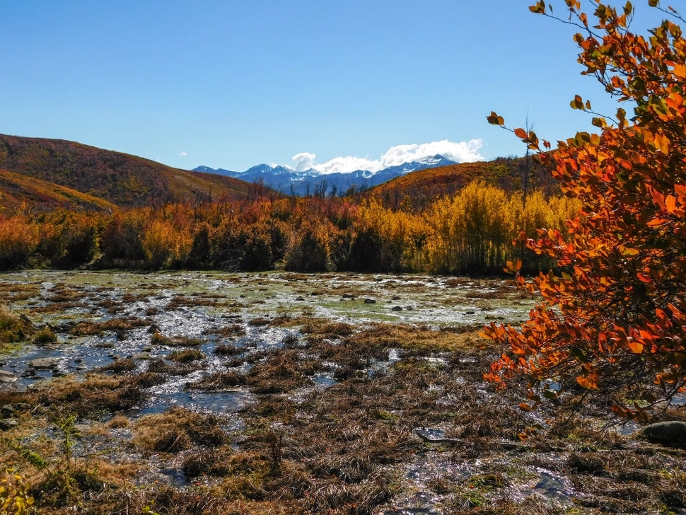 (Erin Alberty The Salt Lake Tribune) Maples, oak and aspen line Cascade Springs with fall color on Oct. 9, 2017 in Wasatch County.