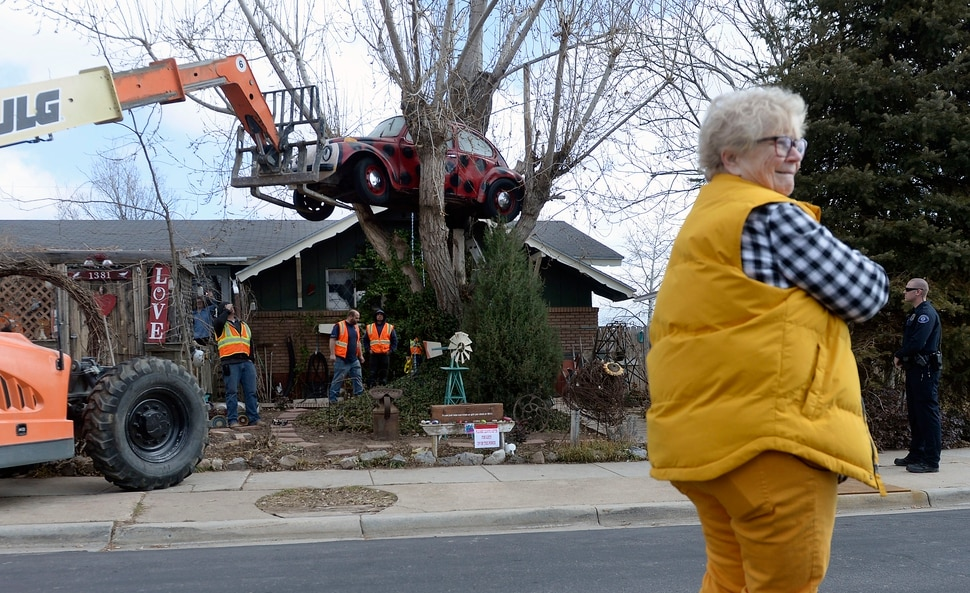 (Al Hartmann | The Salt Lake Tribune) Clearfield public works personnel use a crane to remove Janis Zettel's gutted VW Beetle from a tree in her front yard Tuesday Feb. 13. She put it up a few months ago as an art installation. Now it has to come down.