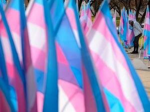 (Trent Nelson  |  The Salt Lake Tribune) Flags at City Hall in Salt Lake City on Tuesday, Nov. 17, 2020, mark Transgender Awareness Week.