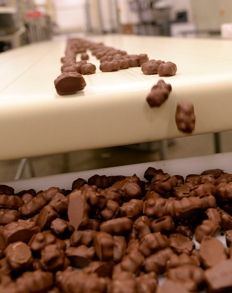 (Al Hartmann | The Salt Lake Tribune) Chocolate cinnamon bears head down the production line at Sweet Candy Co., in Salt Lake City. The candy recently has become a sweet obsession in Utah.