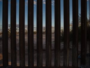 """(Ariana Drehsler 