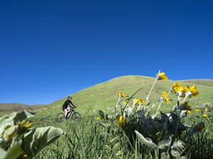 (Rick Egan | The Salt Lake Tribune) A bicyclist rides on a trail in the foothills above Salt Lake City, near City Creek Canyon, on Saturday, May 8, 2021.