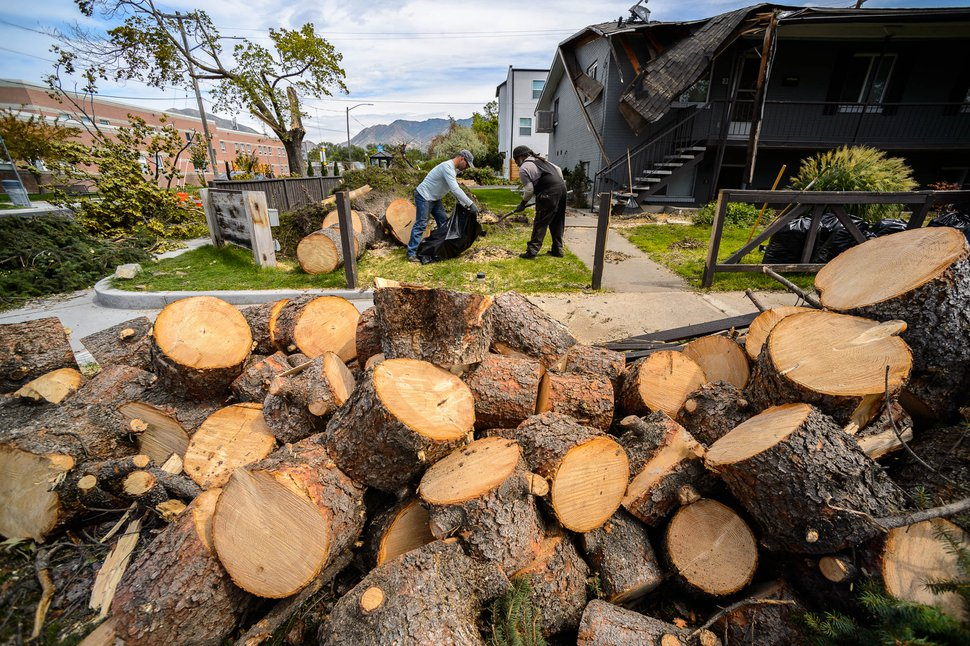 (Trent Nelson | The Salt Lake Tribune) Workers clean up debris at 1700 South 600 East after trees were downed by Tuesday's high winds, in Salt Lake City on Wednesday, Sept. 9, 2020.