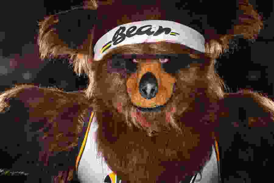 Utah Jazz fire man who built Bear mascot into award-winning role model for NBA franchises