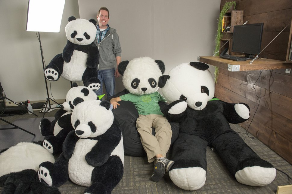 Rick Egan | The Salt Lake Tribune COO Ryan Sanders, (standing) and CEO Ben Peterson (wearing panda head) of BambooHR, a small information-technology company identified as one of the best workplaces in Utah, Wednesday, November 5, 2014