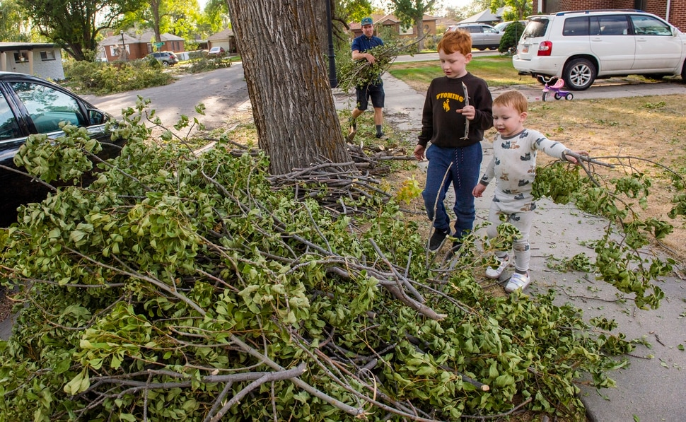 (Rick Egan | The Salt Lake Tribune) Ben Howell gathers up tree branches with the help of Mason Garwood, and Mason Garwood, in Rose Park onThursday, Sept. 10, 2020.