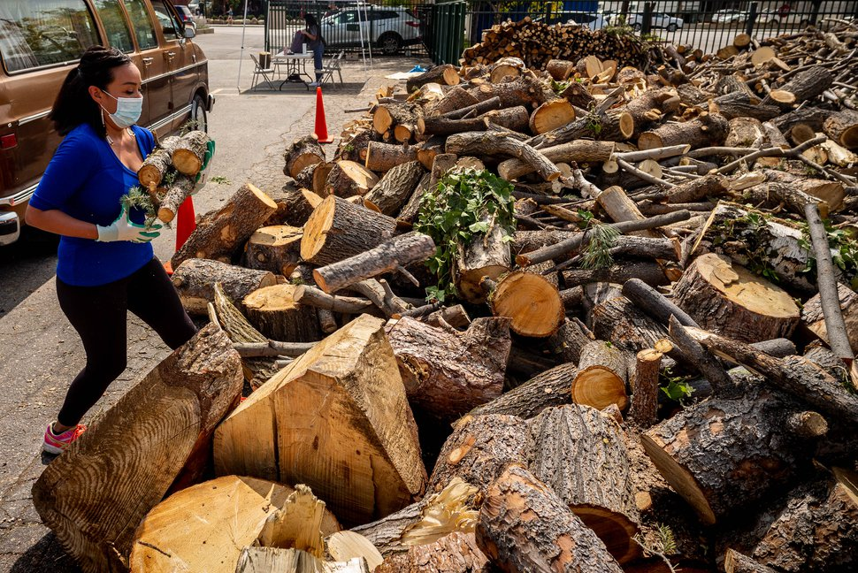 (Trent Nelson | The Salt Lake Tribune) Samantha Eldridge stacks wood from fallen trees that is being donated to the Urban Indian Center of Salt Lake on Wednesday, Sept. 16, 2020.