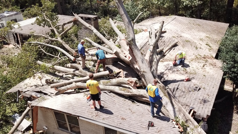 (Photo courtesy of The Church of Jesus Christ of Latter-day Saints) Latter-day Saint volunteers remove a fallen tree from a house in Leesville, La., on Saturday, Aug. 29, 2020.