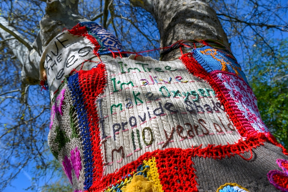 Leah Hogsten | The Salt Lake Tribune I wanted to have a voice specifically for the trees, said Katie Pugh, who yarn bombed the trees in City Creek Park across from her home for the week to celebrate Earth Day and Arbor Day. It's awesome that the park exists and its been unaltered for so long. Salt Lake City's Department of Public Utilities has proposed a series of upgrades for its Memory Grove, but neighborhood residents say a new pump house the city wants to build is too big, unsightly and threatens to take out several mature trees and ruin the aesthetics of the park.