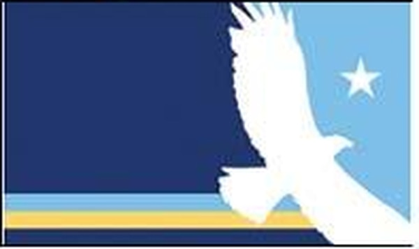 Proposed Salt Lake City flag, 2004. Courtesy of Douglas Sligting.