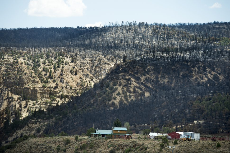 (Rick Egan | The Salt Lake Tribune) Some cabins were spared as the Dollar Ridge Fire burned along the ridge of Currant Creek Mountain, Tuesday, July 10, 2018.