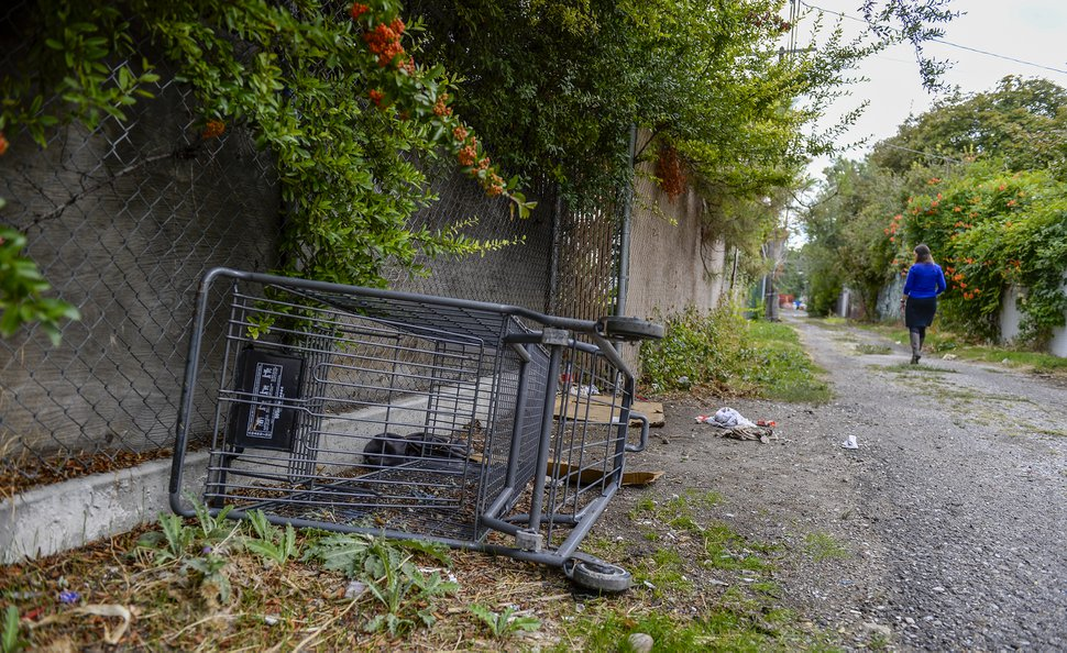 (Leah Hogsten | Tribune file photo) Ballpark Community Council Chair Amy Hawkins walks the alley between Main Street and Richards Street, Sept. 19, 2019. Hawkins uses the SLC Mobile app to report the location of graffiti to have it removed and the location of abandoned shopping carts.